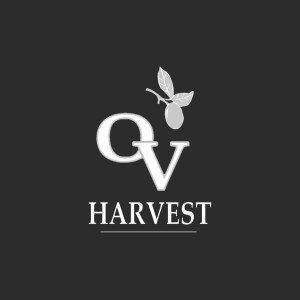 logo large background